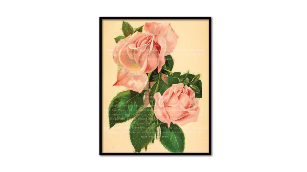 Vintage Pink Rose Printable Art